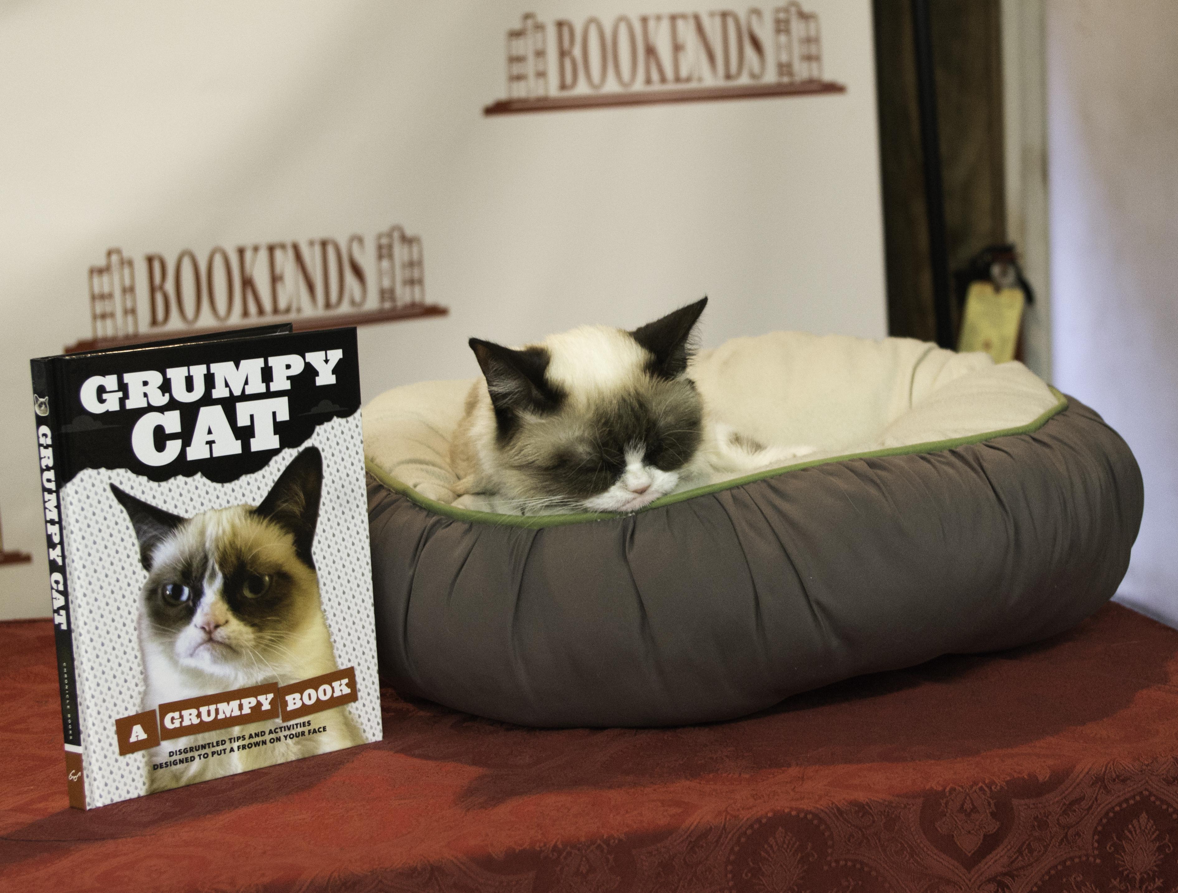 Grumpy cat a grumpy book nerd base