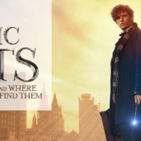 Fantastic Beasts and Where to Find Them - A Treat for Witches and Wizards Everywhere